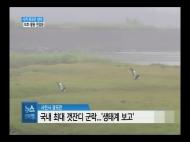 (R) 사천 광포만 생태 보호·활용 잰걸음